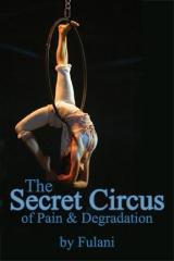Secret Circus cover image
